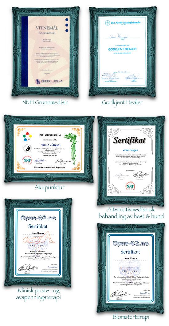 Mine Diplomer